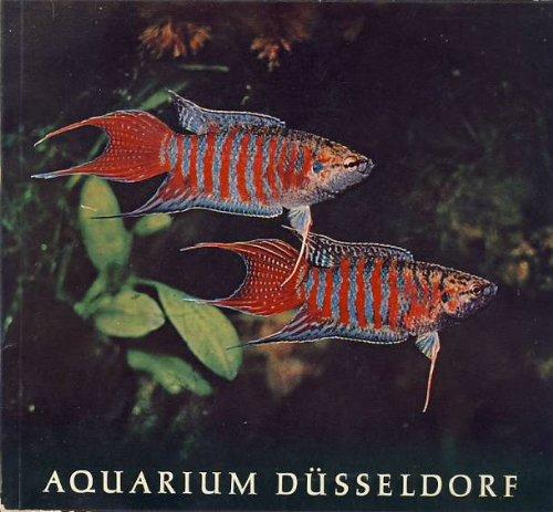 Das Aquarium der Stadt Düsseldorf im Museumsbunker am Zoo