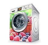 setecientosgramos Vinilo Lavadora | Stickers Washing Machine| Pegatina Lavadora | Red Fruits