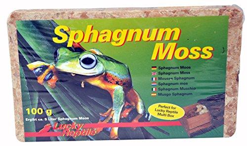 Lucky Reptile SM-100 Sphagnum Moss Ziegel 100 g, Terrarienmoos