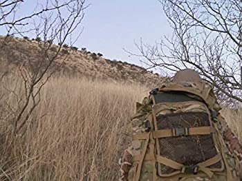 A Trip of Firsts  Mexico Coues Deer