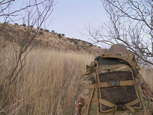 A Trip of Firsts: Mexico Coues Deer