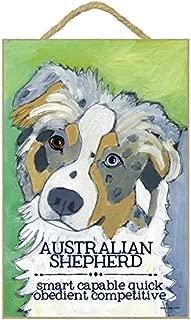 SJT ENTERPRISES, INC. Australian Shepherd 7