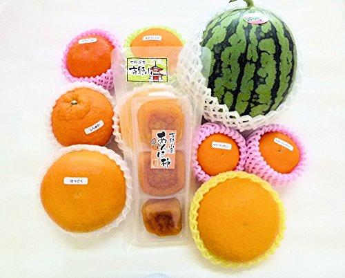 【福袋】紀州田舎の小さな八百屋さん フルーツセット (フルーツギフトセット) 種類は旬のものをチョイスします