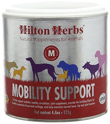 Hilton Herbs Mobility Support Complément Alimentaire pour Chien Boîte de 125 g