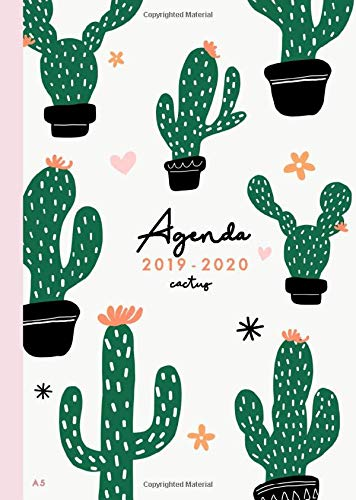 Agenda 2019 2020 cactus: Agenda 16 mesi settembre 2019 - dicembre 2020 |  Agenda 2019/2020 giornaliera italiano