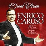 Great Arias [Vinilo]
