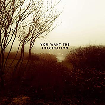 You Want The Imagination