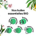 Huile Essentielle BIO d'Arbre à Thé, Tea tree - 100% Pure et Naturelle - HEBBD et ECOCERT - Utilisation Alimentaire - Parfum Citronné, Boisé et Terreux - 10ml - VOSHUILES #3