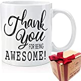 Thank You for Being Awesome, Encouragement Gift Coffee Mug Funny Gifts for Coworker, Appreciation Gift Administrative Professionals Day Admin Assistant for Thanksgiving Festival Friend (White)