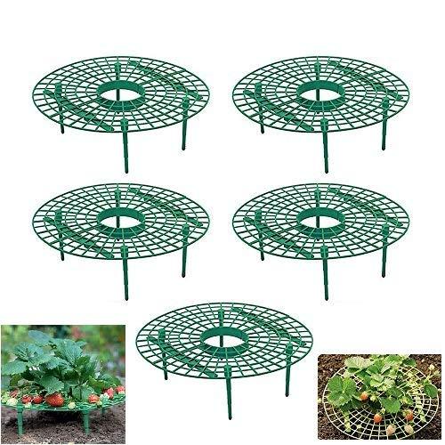 VVCIIC Erdbeerunterstützungsrahmen Pflanzenunterstützung Balkon Obstunterstützung Blume Pflanze Rebe Klettergerüst Gartensäulenunterstützung