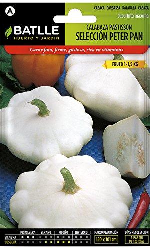 Semillas Hortícolas - Calabaza Patisson blanca Peter Pan -