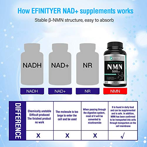 51dSOl5pL9L - NMN Supplement, 500mg Nicotinamide Mononucleotide Per Serving Powerful NAD+ Precursor Naturally Boost NAD+ Levels Supplement for Anti-Aging Energy Metabolism Vegan Friendly 60 Capsules