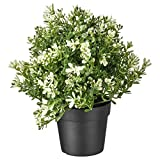 IKEA FEJKA Künstliche Topfpflanze Thymian 9 cm