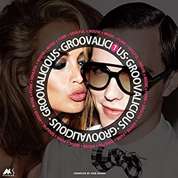 Groovalicious Vol.1