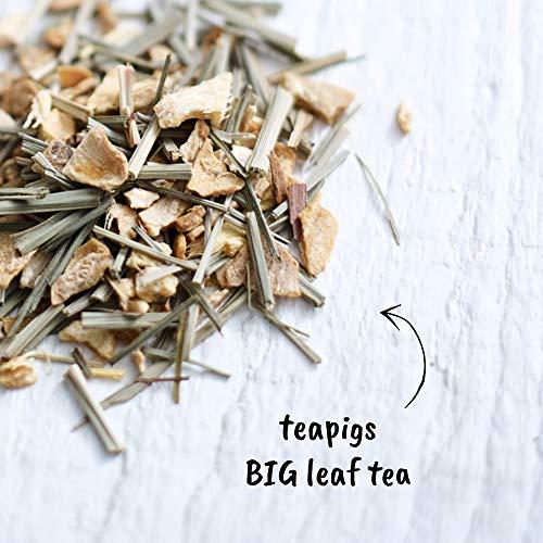 teapigs Lemon & Ginger Herbal Tea Bags Made With Whole Leaves (1 Pack of 15 Tea bags) (520)