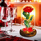 Rosa Eterna,Rosa Bella y Bestia,La Bella y La Bestia Rosa Encantada, Elegante Cúpula de Cristal con Base Pino Beauty and Regalos Magicos Decoración para Día de San Valentín Aniversario Bodas