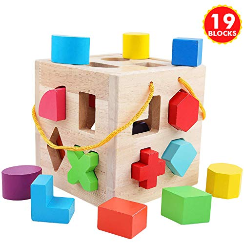 QZM Shape Sorter Toys with 19 Colorful Wood Geometric Shape...