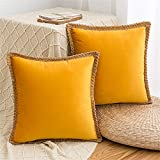 AQOTHES Velvet Farmhouse Throw Pillow Covers Decorative Pillowcase, 2 Pack Trimmed Edge Square Soft Solid Cushion Case for Couch Sofa Bedroom Car, 18 x 18 Inch, Gold