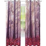 jinguizi Cortina opaca aislante térmico con diseño de árboles de bosque, luz del sol, 52 x 84, para puerta de cristal