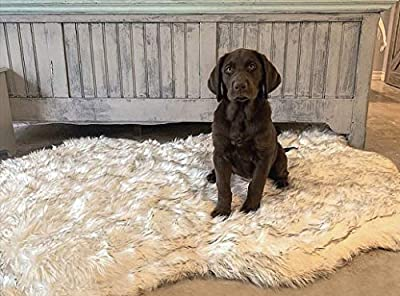 iHappyDog Luxury Faux Fur Orthopedic Dog Bed, Memory Foam Dog Bed? for? Small, Medium, Large and XL Pets, Fluffy Pup Rug with Waterproof ?and ?Washable Soft Cover, Bone White