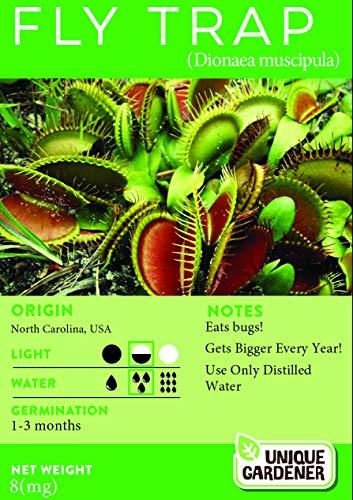 Venus Flytrap (Dionaea muscipula) Seeds Count: 20 Seeds