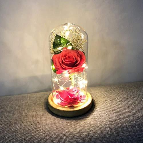 IONE Rosa Roja Con Luces LED Y Basis En Cúpula De Vidrio Como Regalo De San Valentín para EL Día De La Madre, 24,8 cm x 13,2 cm, Vereinigtes Vermögen