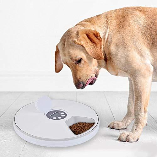 WANGXIAO Automatische Tierfütterung Katzenfütterung 24h Timer 6 Gitter Hunde Katzenfutter Spender Hunde Katzen Elektrisch Trocken Nassfutter Geschirr Futtermittel Heimtierbedarf