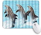 PATINISA Alfombrilla Raton Ordenador,Divertida Vida Marina Acuario Bailando Delfines Fancy Show Print,Alfombrilla Suave Gaming para Ratón Adecuado para ratón de Oficina y para Gaming 240 x 200 mm
