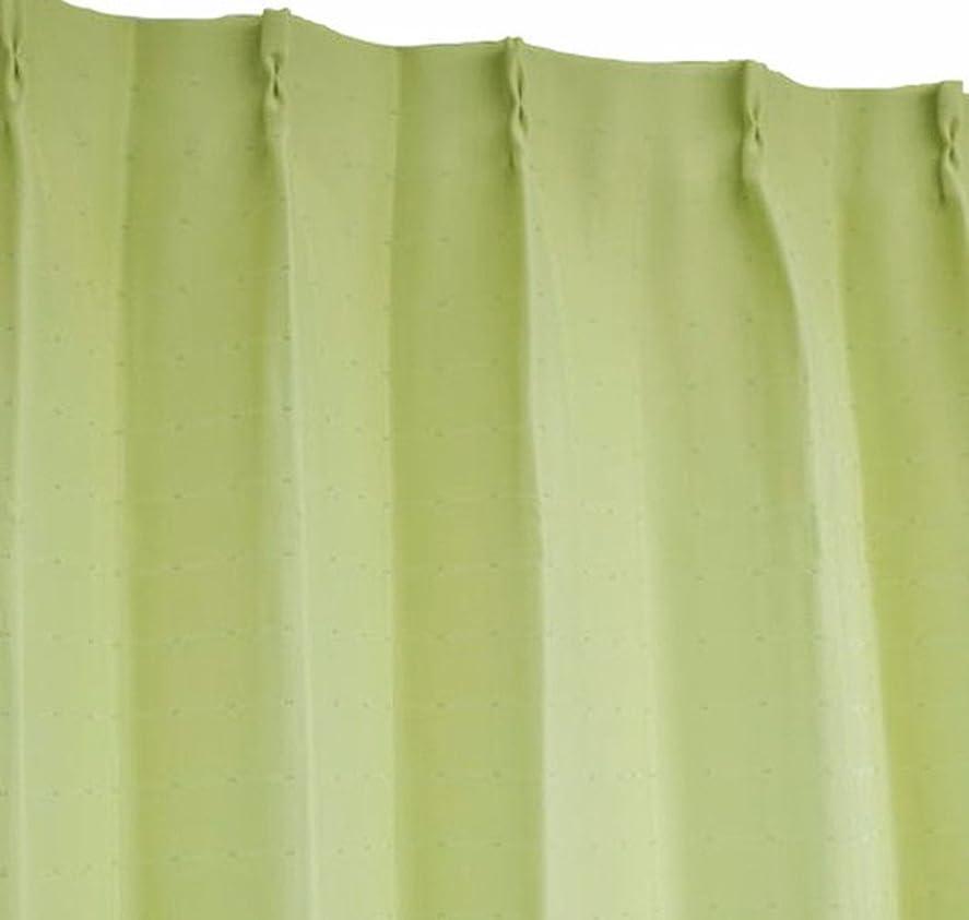 レーザメーターバイバイArie(アーリエ) 遮光カーテン ポポ 2枚組 100×135cm グリーン