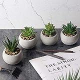 Lot de 5 mini plantes artificielles en pot - Orchidée avec vase en verre - Fleurs fuax - Pour décoration de bureau, extérieur, salon, bureau