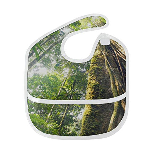 Zemivs Babero de bebé Alimentación Amazon Primeval Jungle Mancha suave personalizada Bebé de alimentación Dribble Drool Baberos Eructo para bebés 6-24 meses Amazon Primeval Jungle