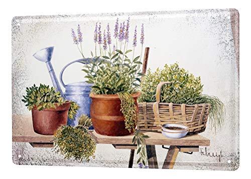 LEotiE SINCE 2004 Blechschild Galerie Maler Franz Heigl Bild Stilleben Pflanzen Gartentisch Lavendel Kanne 20x30 cm Metallschilder Nostalgie Küche