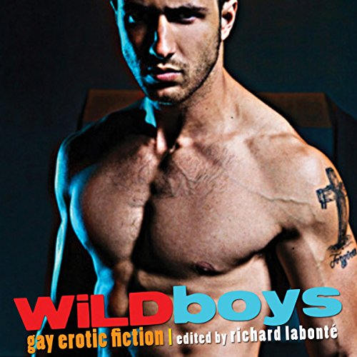 Wild Boys: Gay Erotic Fiction audiobook cover art