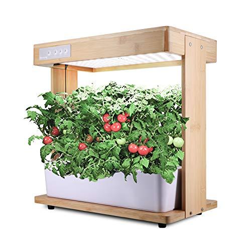 Grow Lights Indoor Garden Kit Système Culture Hydroponique en Bambou Naturel Mini-Lampe pour Plantes Légumes Salade