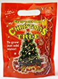 Grow your own real Christmas with seeds and soil just add water