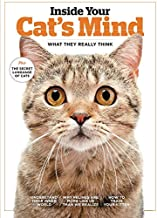 Inside Your Cat's Mind: What They Really Think