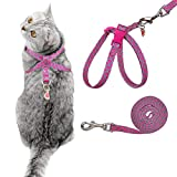 Best Cat Harnesses - PUPTECK Escape Proof 8 Style Cat Harness Watermelon Review