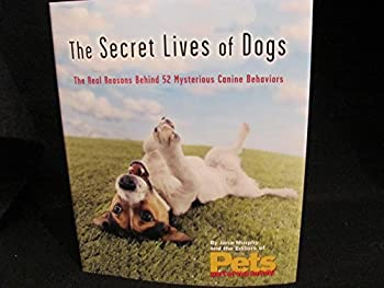 The Secret Lives of Dogs The Real Reason Behind 52 Mysterious Canine Behaviors