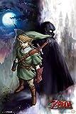Pyramid America The Legend of Zelda Twilight Princess Link Video Game Gaming Cool Wall Decor Art Print Poster 12x18