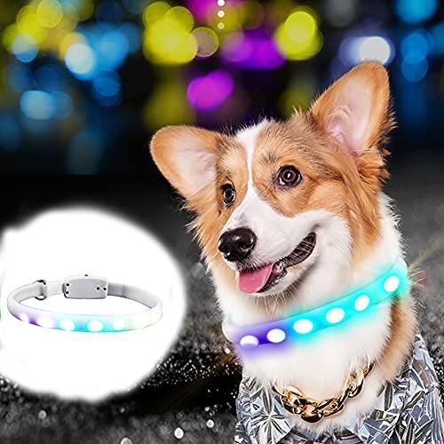 CHMEYUN Collar de Perro trafico Reflectante con Hebilla de Seguridad y Cuello de Perro con Collar de Gatito Collar de Perro
