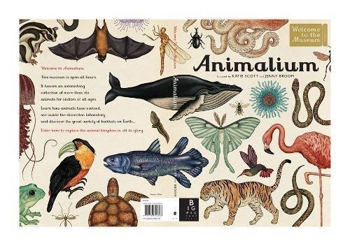 Animalium (Welcome To The Museum)
