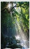 ABAKUHAUS Regenwald Schmaler Duschvorhang, Wald Sonnenlicht Foto, Badezimmer Deko Set aus Stoff mit Haken, 120 x 180 cm, Mehrfarbig