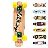 Meteor Skateboard Mini Cruiser Retro Board Completo con Cuscinetti ABEC-7 e Ruote PU Ideale per Bambini Adolescenti e Adulti Ragazzo e Ragazza (Old School)