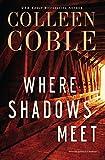 Where Shadows Meet: A Romantic Suspense Novel