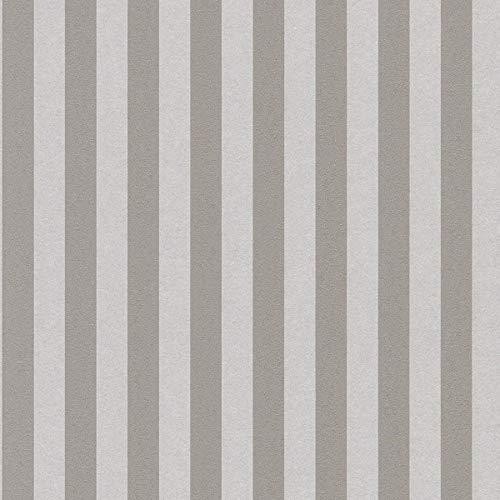 Casa Padrino Barock Textiltapete Grau/Silber 10,05 x 0,53 m - Barock Tapete mit Streifen