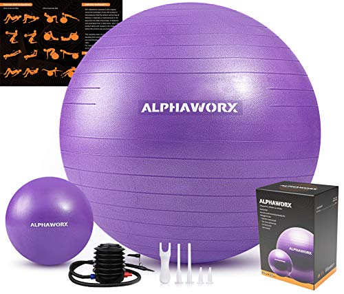 ALPHAWORX Set of 2 Exercise Ball 65cm + 25cm, Anti-Burst Yoga Ball Set Supports 1100 lbs, Weighted Balls for Exercise with Quick Pump for Yoga, Pilates, Gym Workout & Pregnancy Birthing Training