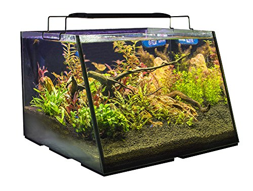 Lifegard Aquatics R800202 Full-View 5 Gallon Aquarium