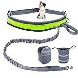 Guinzaglio jogging a mani libere per cani, estensibile da 125 a 210 cm,Riflettente ammortizzante con cintura regolabile ideale come guinzaglio da running,borsa da trasporto extra 1 e borsa da viaggio