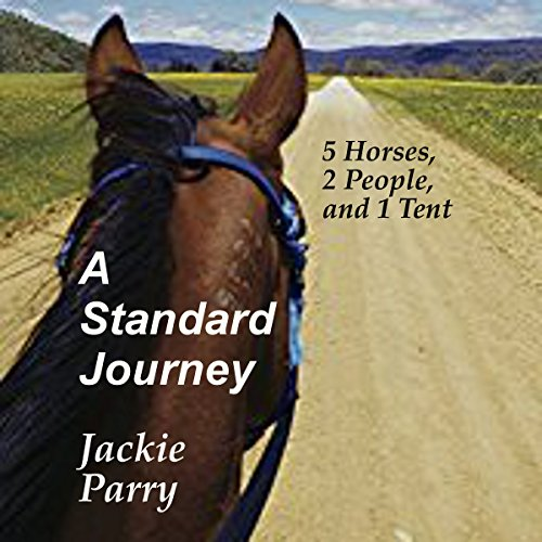 A Standard Journey audiobook cover art