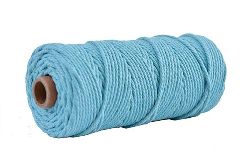 3mm Colour Macrame Craft Cord Twisted Rope 100% Dyed Cotton Reel100m – Dark Grey Piping Cord Washing line Piping Cord Furniture Wrapping Plant Hangers Wall hangings (Sky Blue)